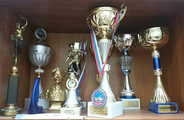 Кубки и награды агентства недвижимости «Московские огни»;